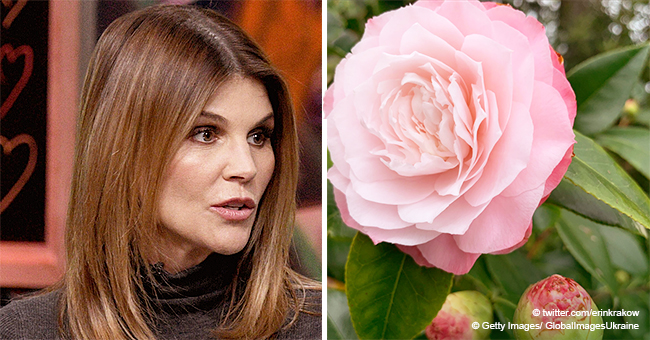 Lori Loughlin's co-Star Shares a Cryptic Post Amid Bribery Scandal: 'You Are Always There for Me'