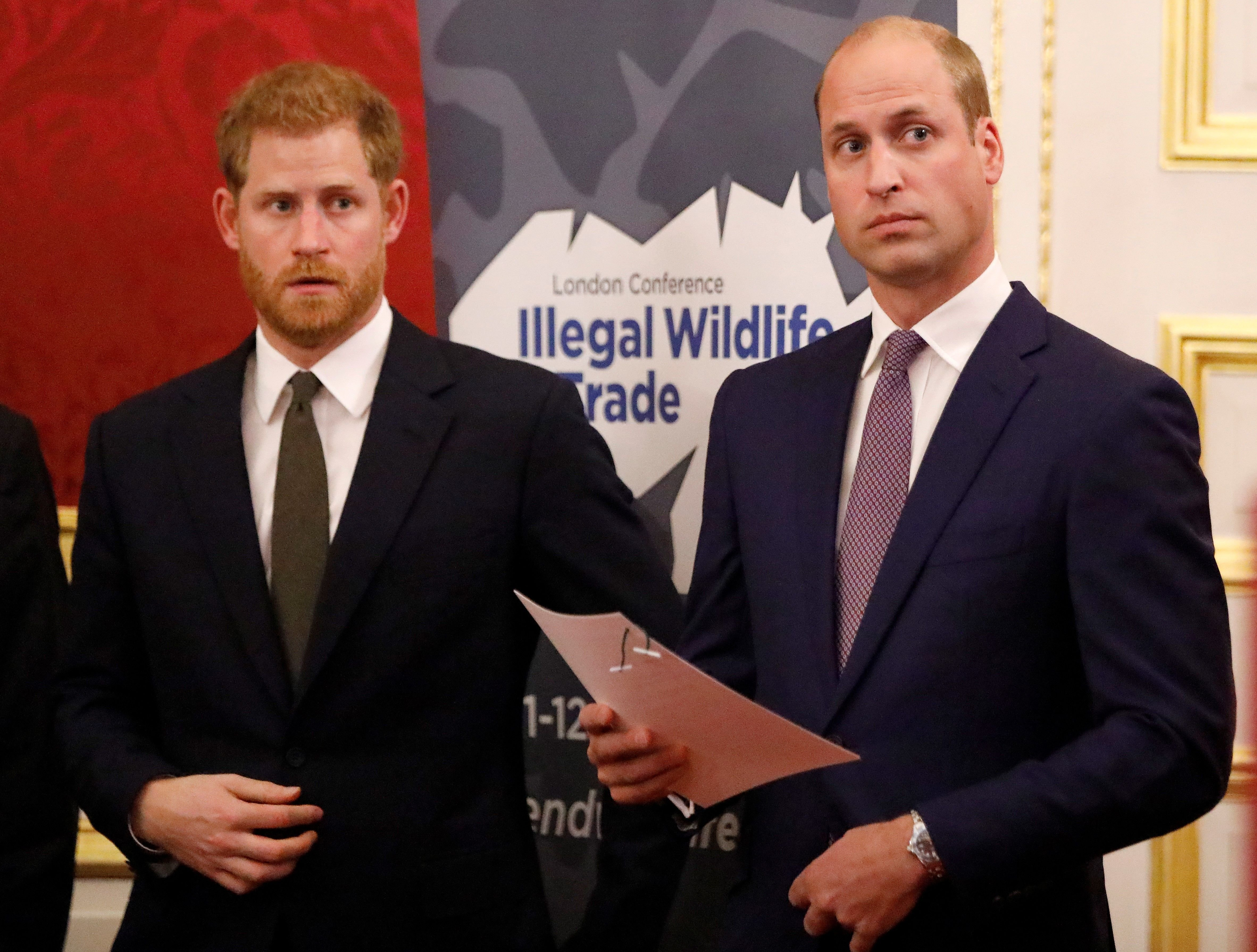 Prince William and Prince Harry hosted a reception to officially open the 2018 Illegal Wildlife Trade Conference at St James' Palace on October 10, 2018 | Photo: Getty Images