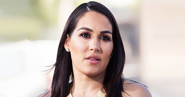 Brie Bella Is Confused over Nikki Bella and Artem Chigvintsev's Baby News