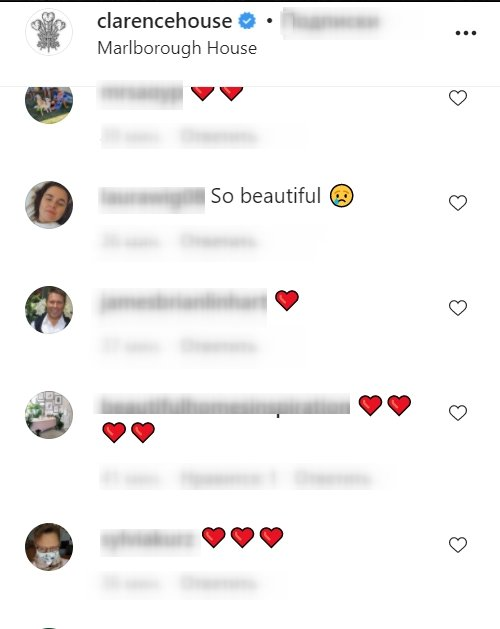 A screenshot of a fan's comment on Clarence House's post on its instagram page | Photo: instagram.com/clarencehouse/