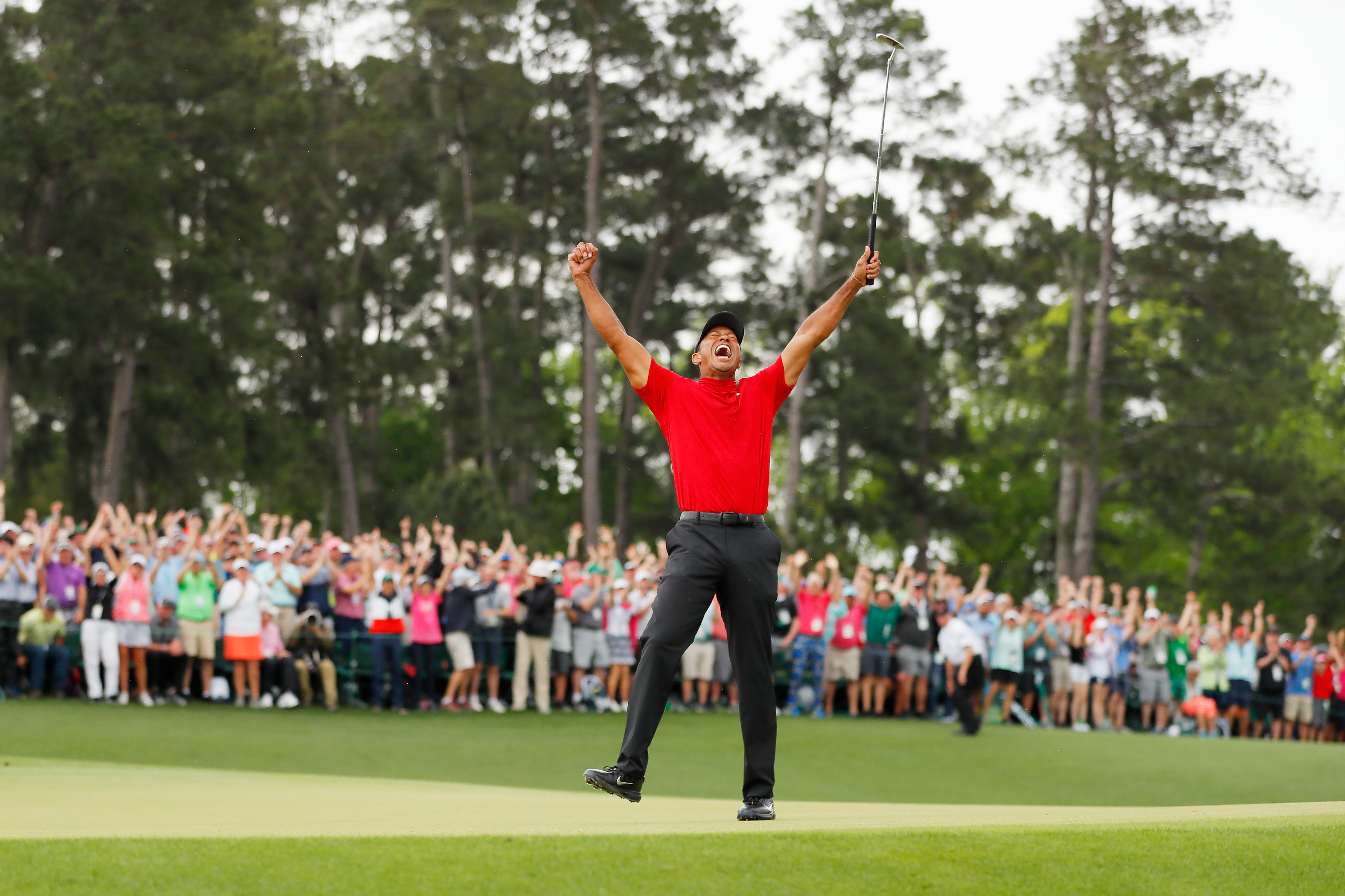 Tiger Woods in his element.   Photo: Getty Images