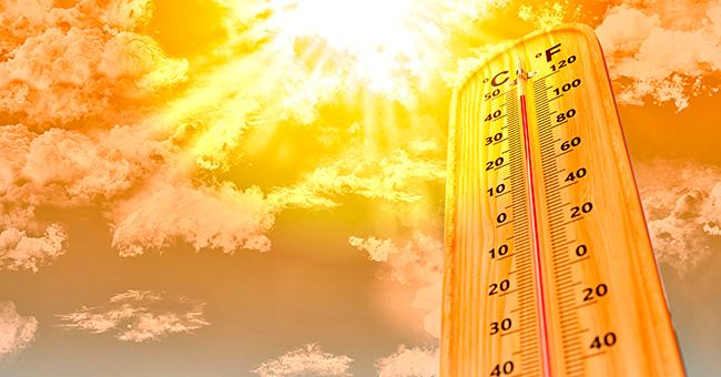 La France s'apprête à battre le record de température de 2003 avec environ 15 000 morts