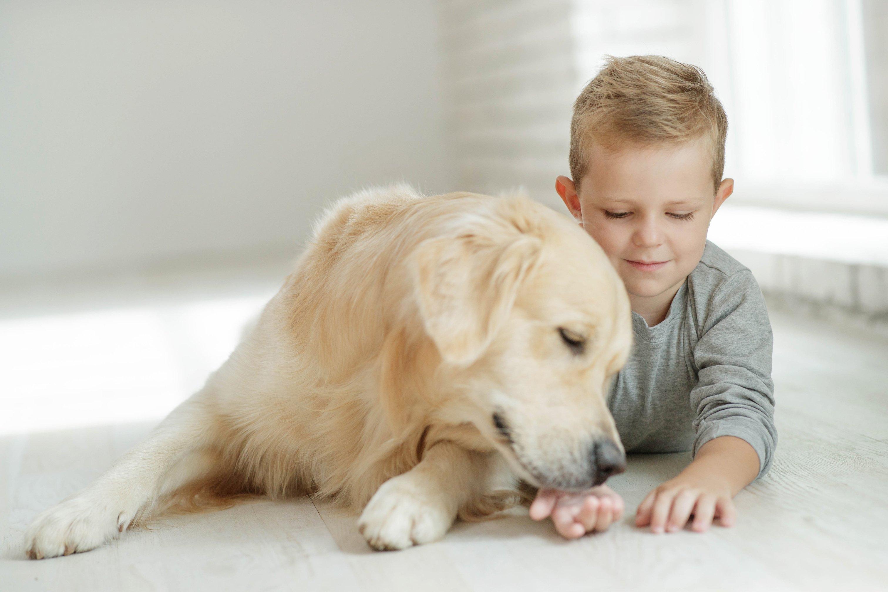 Niño con su perro. || Fuente: Shutterstock