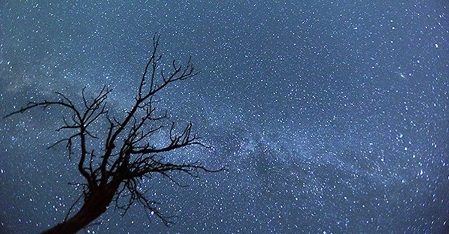 Orionids, One of the Best Meteor Showers of the Year Peaks This Week — Here's How to Watch