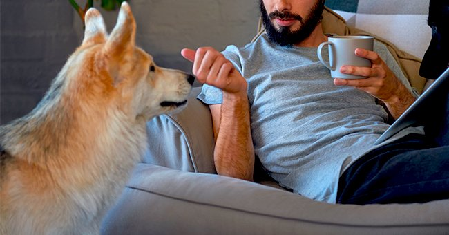 Daily Joke: A Man Has a Conversation with a Talking Dog