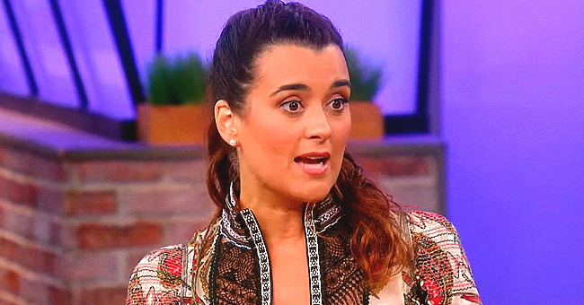 NCIS Star Cote De Pablo Talks Sudden Exit and Return to the Series on the 'Rachel Ray Show'