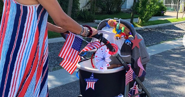 Hoda Kotb Celebrates July 4th by Decorating Daughters' Strollers with USA Flags