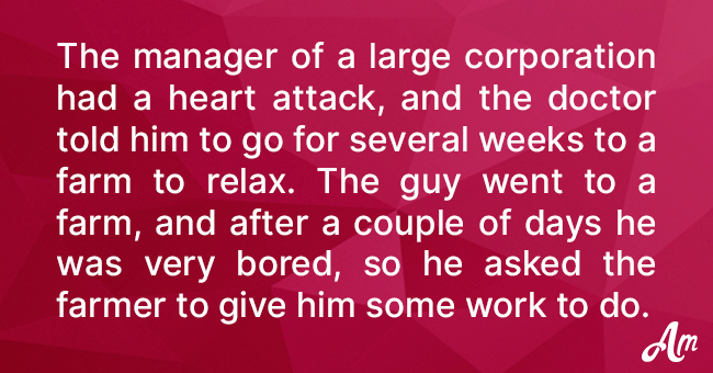 Farmer Decided to Test a Manager Who Had a Heart Attack with Hard Farm Work