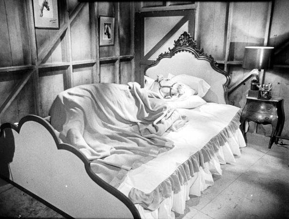 "American horse and actor Bamboo Harvester lies in a bed for an episode of ""Mister Ed"" in 1962. 