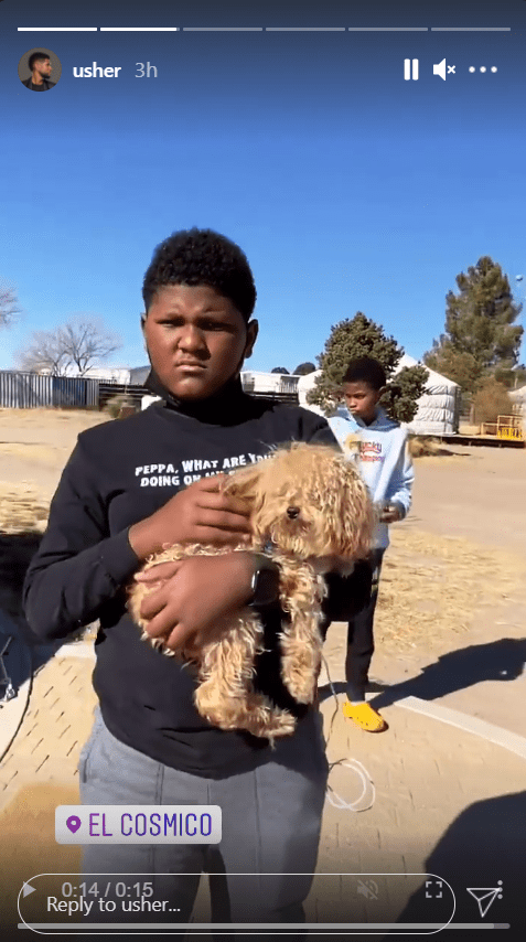 Usher's son Naviyd pictured carrying a puppy while his brother looked away behind him.   Photo: Instagram/Usher