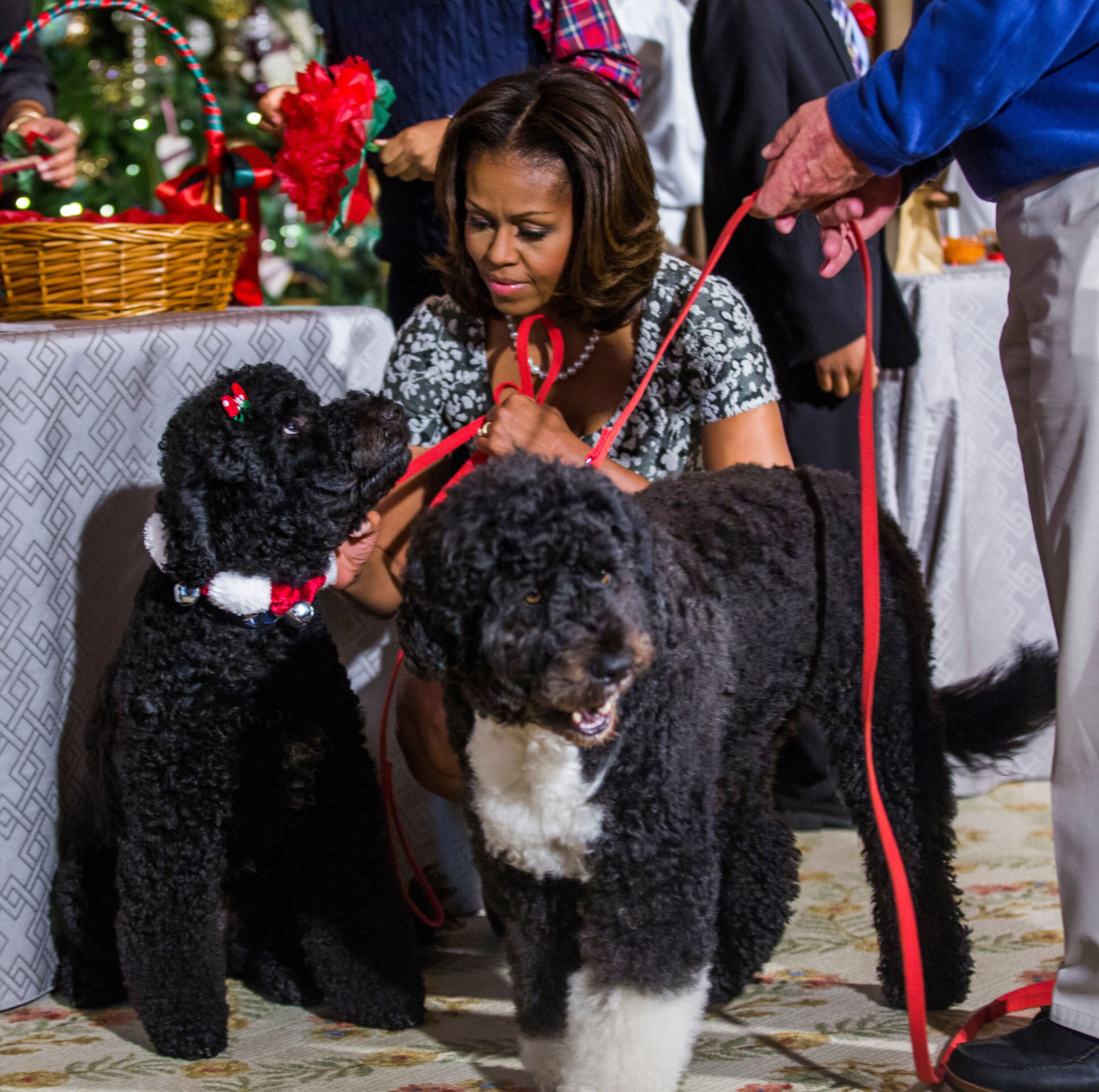 US First Lady Michelle Obama with the family dogs Sunny (L) and Bo (R) during an event to preview the holiday decorations at the White House in Washington, DC. (Photo by Brooks Kraft LLC/Corbis via Getty Images)