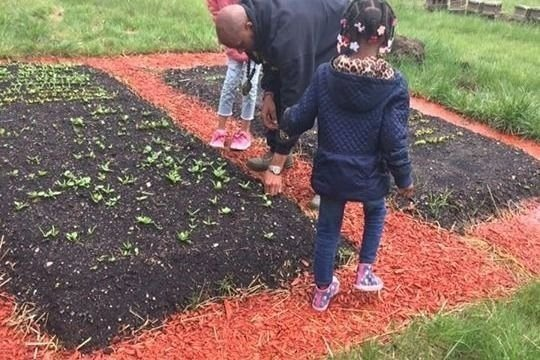gofundme.com/gardeningwhileblack