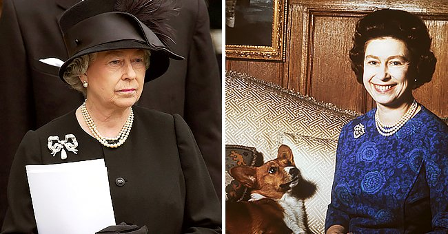 The Sun: Queen Devastated over the Death of Her Dorgi Pup Just a Month after Prince Philip's Funeral
