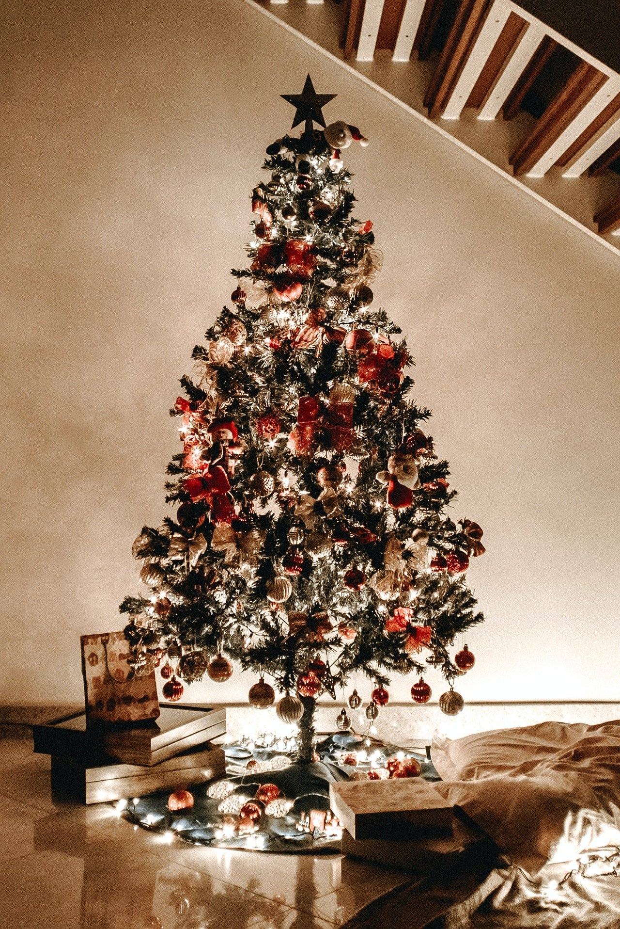Photo of a decorated christmas tree | Photo: Pexels