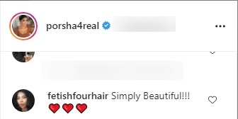 Another fan's comment  on Porsha Williams' post on Instagram | Photo: Instagram/porsha4real