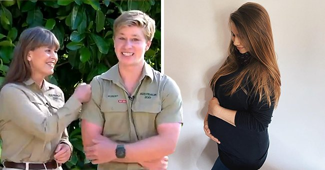 Pregnant Bindi Irwin Responds to Brother Robert after He Called Her Huge during a TV Interview