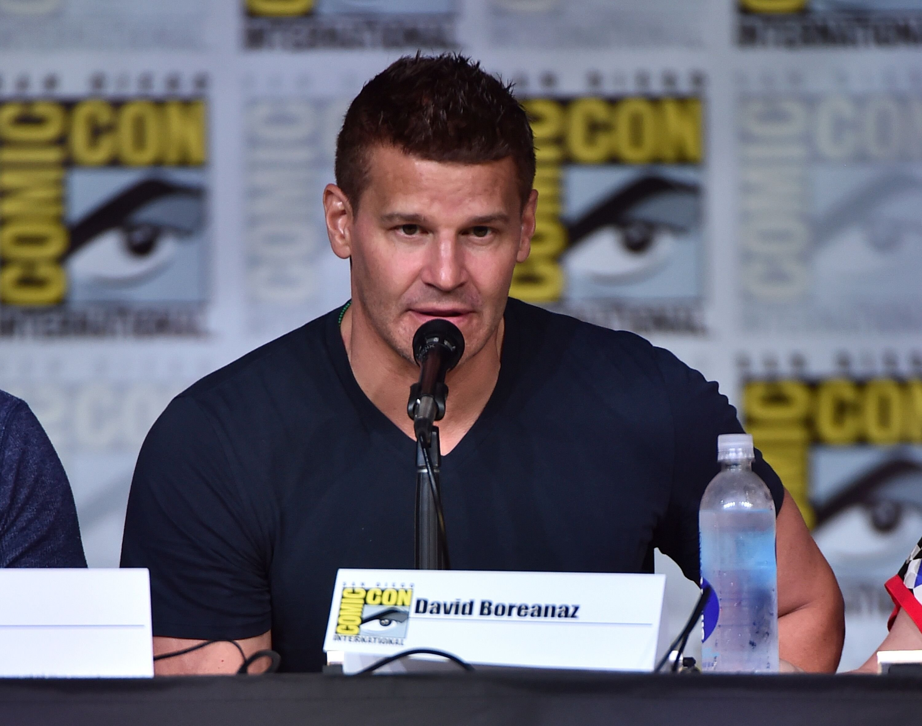 "David Boreanaz attends the ""Bones"" panel during Comic-Con International 2016. 