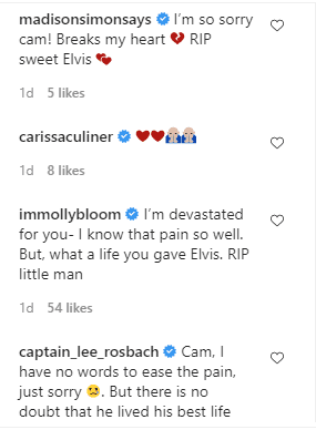 Comments on Cameran Eubanks page Source | Photo: instagram.com/camwimberly1/