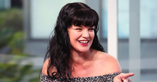 Pauley Perrette of NCIS Is Grateful She Worked with Cast of CBS' Cancelled Show 'Broke'