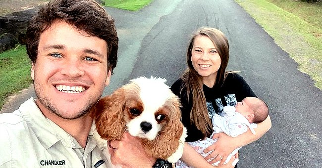 See Adorable Family Photo Bindi Irwin's Husband Chandler Shared of Daughter Grace & Their Pup