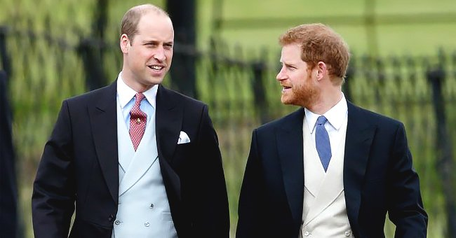 Prince William and Prince Harry Unite for Unveiling of Diana Statue