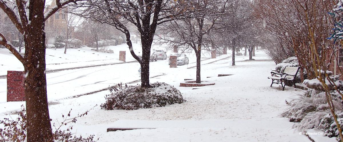 La Normandie est sous la neige : les images impressionnantes de l'anomalie météorologique