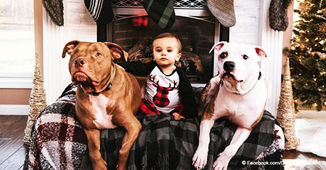Un petit garçon a la grippe et il ne veut être consolé par personne à part son chien