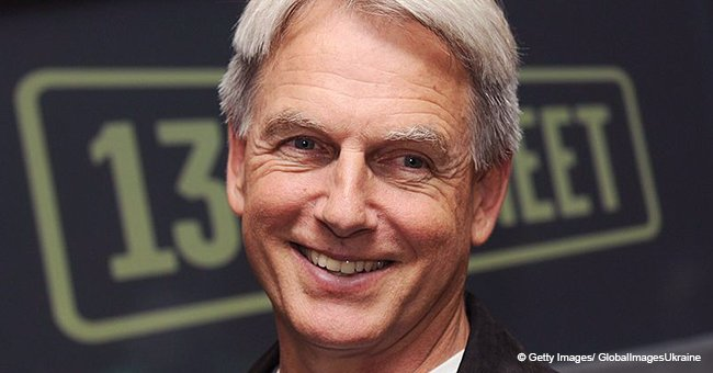 Mark Harmon Answers Questions about the Possibility of Him Leaving NCIS and the Show Ending