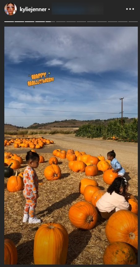A snapshot from Kylie Jenner's story featuring True, Stormi, and Dream playing in the pumpkin patch. | Source: Instagram/kyliejenner
