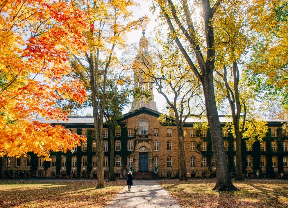 They attended the best universities | Source: Unsplash