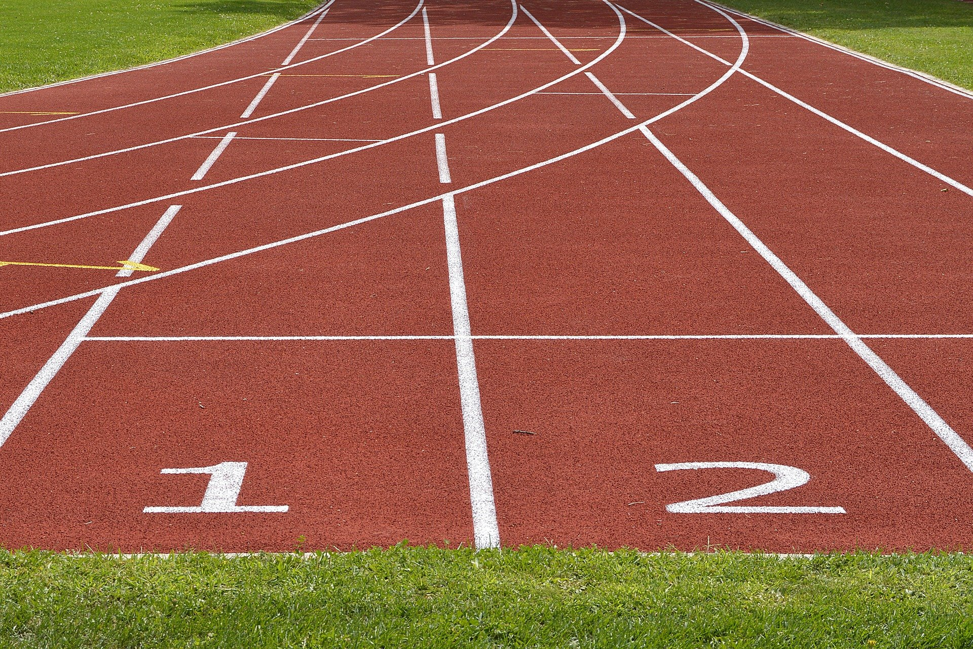 What was he doing with a long pole on the track field? | Photo: Pixabay/anncapictures