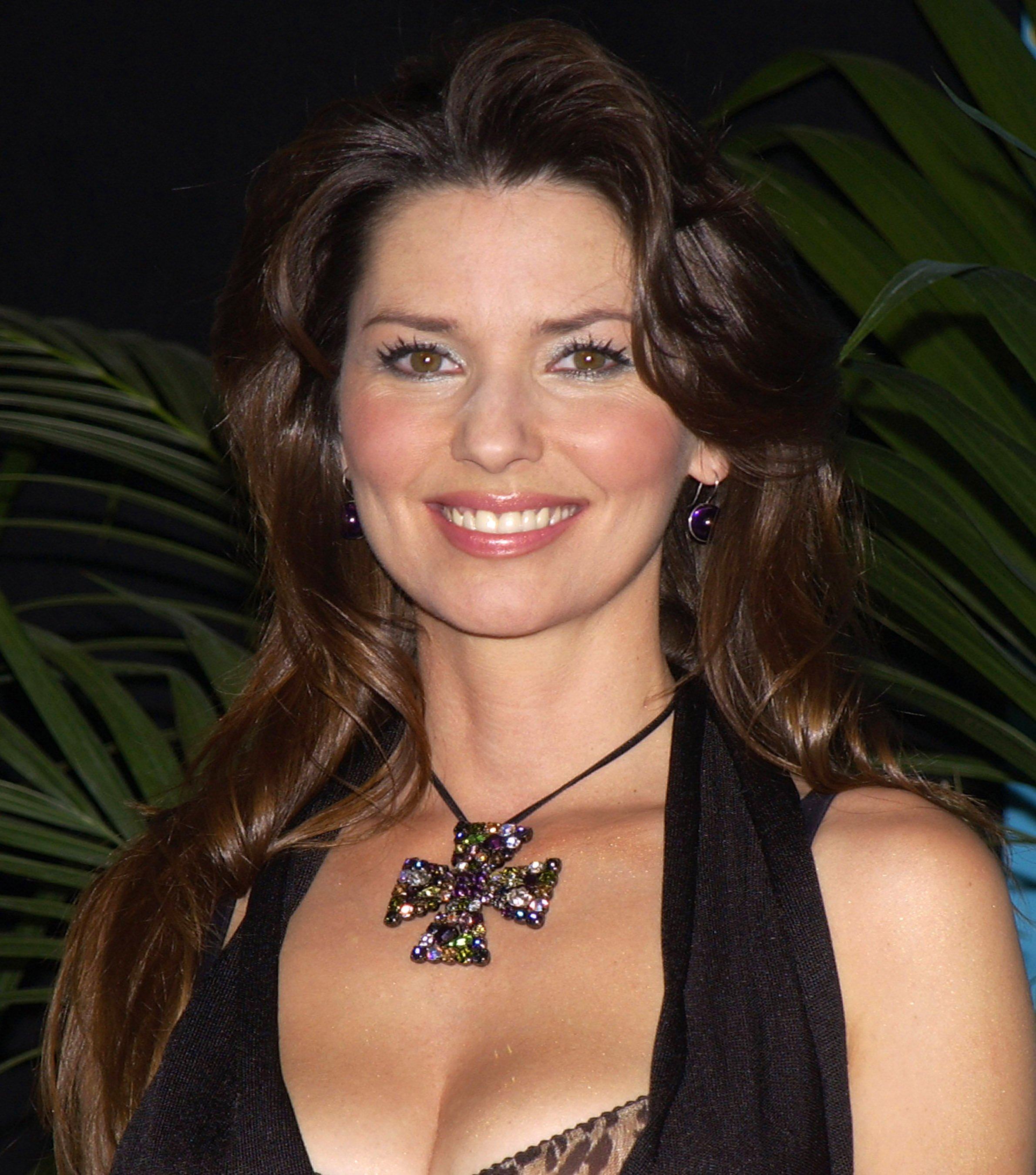 """Shania Twain at the 38th Annual """"Academy of Country Awards"""" in Las Vegas, 2003   Photo: Getty Images"""