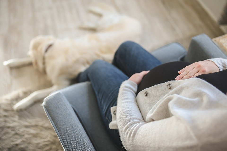 A pregnant woman and her dog. | Photo: Pixabay