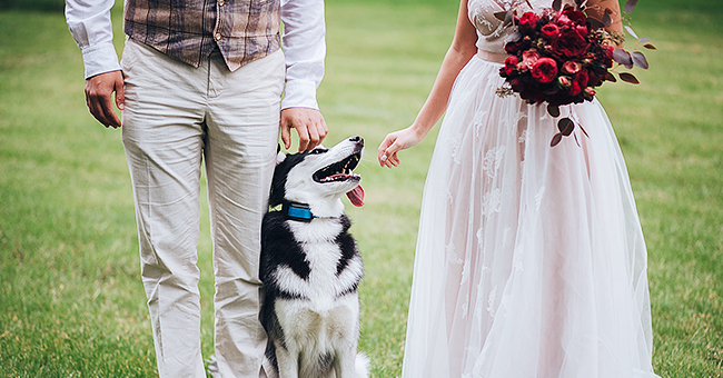 Man Who Wants to Choose Dog over Nephew as the Ringbearer at His Wedding Sparks Debate