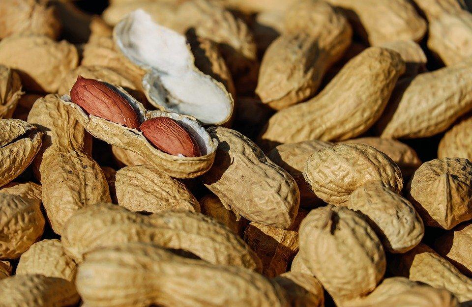 Cacahuète | Image prise de : Pixabay