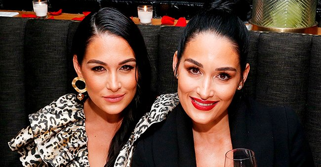 Hollywood Life: Source Claims Nikki and Brie Bella Are Excited to Welcome Babies around the Same Time