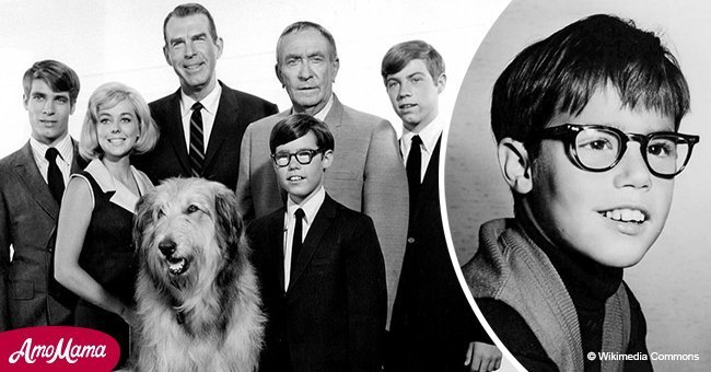 Remember Ernie from 'My Three Sons'? He Married Karen Huntsmen & Acted in 'War Dogs'