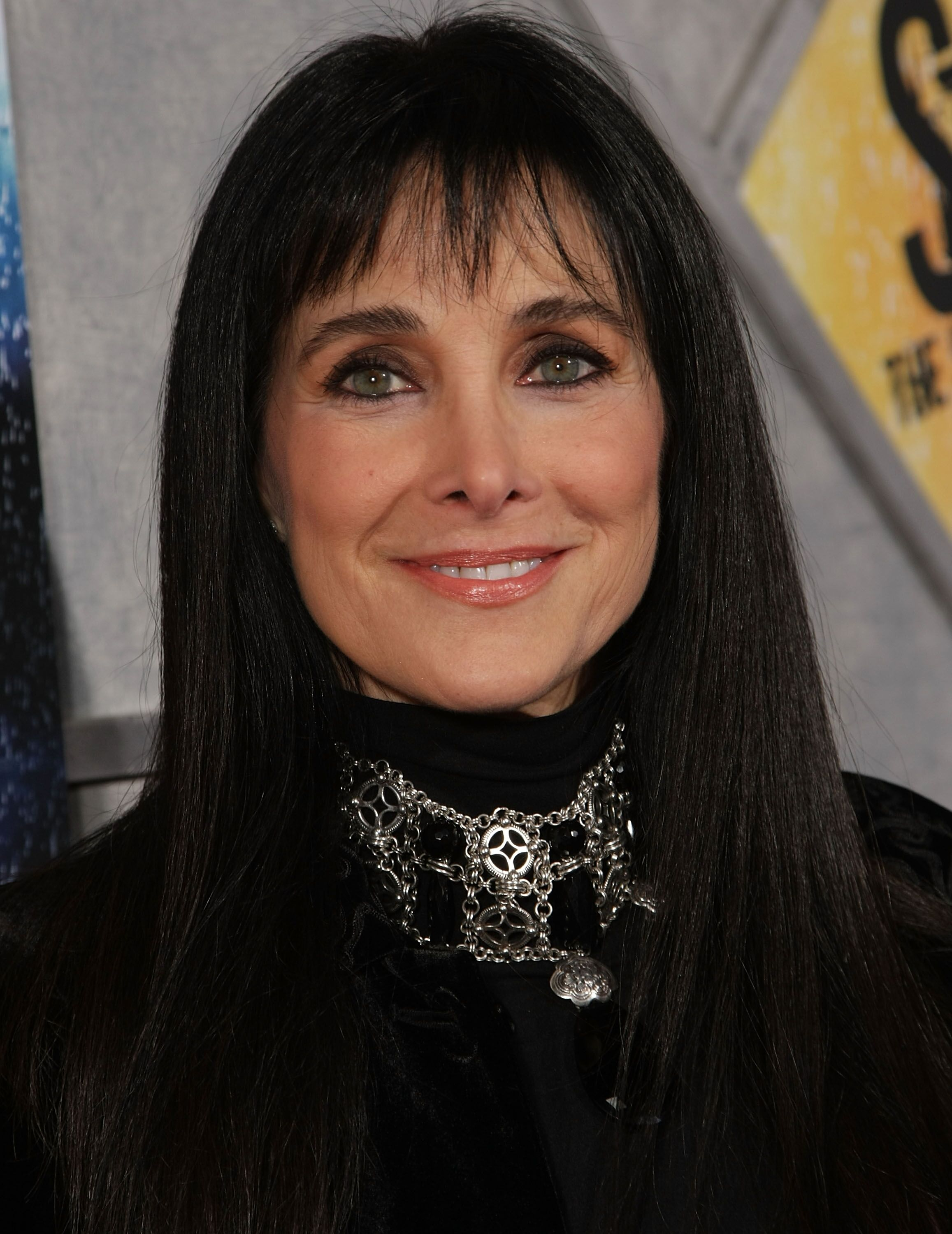 "Connie Sellecca at the premiere of the film ""Step Up 2 The Streets"" in 2009 
