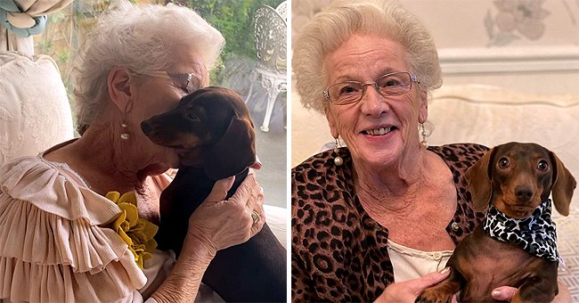 84-Year-Old Woman and Sweet Dachshund Sally Are Soulmates