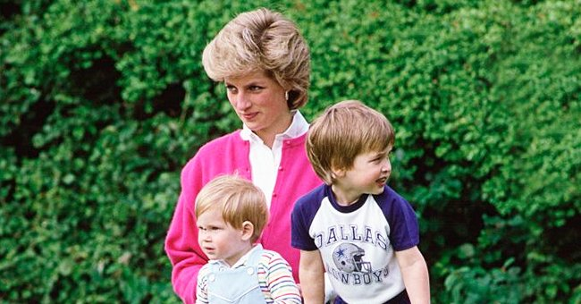 'Finding Freedom' Author Claims Princess Diana Would Have Intervened in Her Sons' Relationship