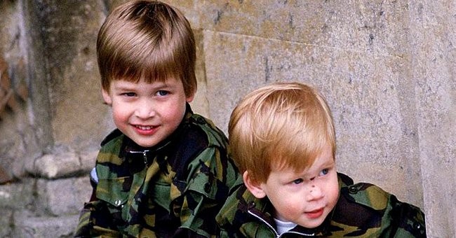 Harry Reportedly Holds Grudge as He Was Always 'Dirty Rascal' while William was 'King of the Castle'