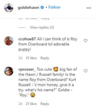 Fans comment on the name of Goldie Hawn's new Labrador puppy. | Source: Instagram/goldiehawn.