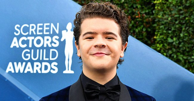 Gaten Matarazzo at the 26th Annual Screen Actors Guild Awards on January 19, 2020 in Los Angeles, California. | Photo: Getty Images