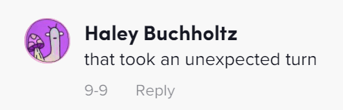 Individual commenting on a TikTok post by Haley & Dunkin. | Source: tiktok.com/@ thedeeckendogs