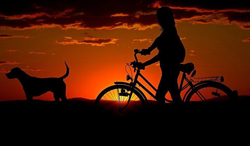 Frau mit Rad und Hund bei Sonnenuntergang | Quelle: Pixabay