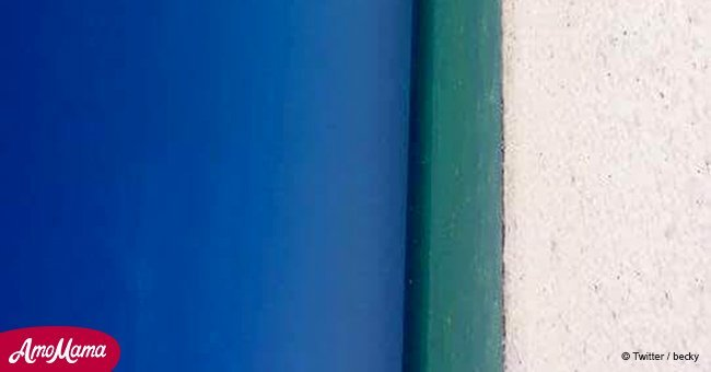 New 'Door/Beach' optical illusion goes viral this weekend