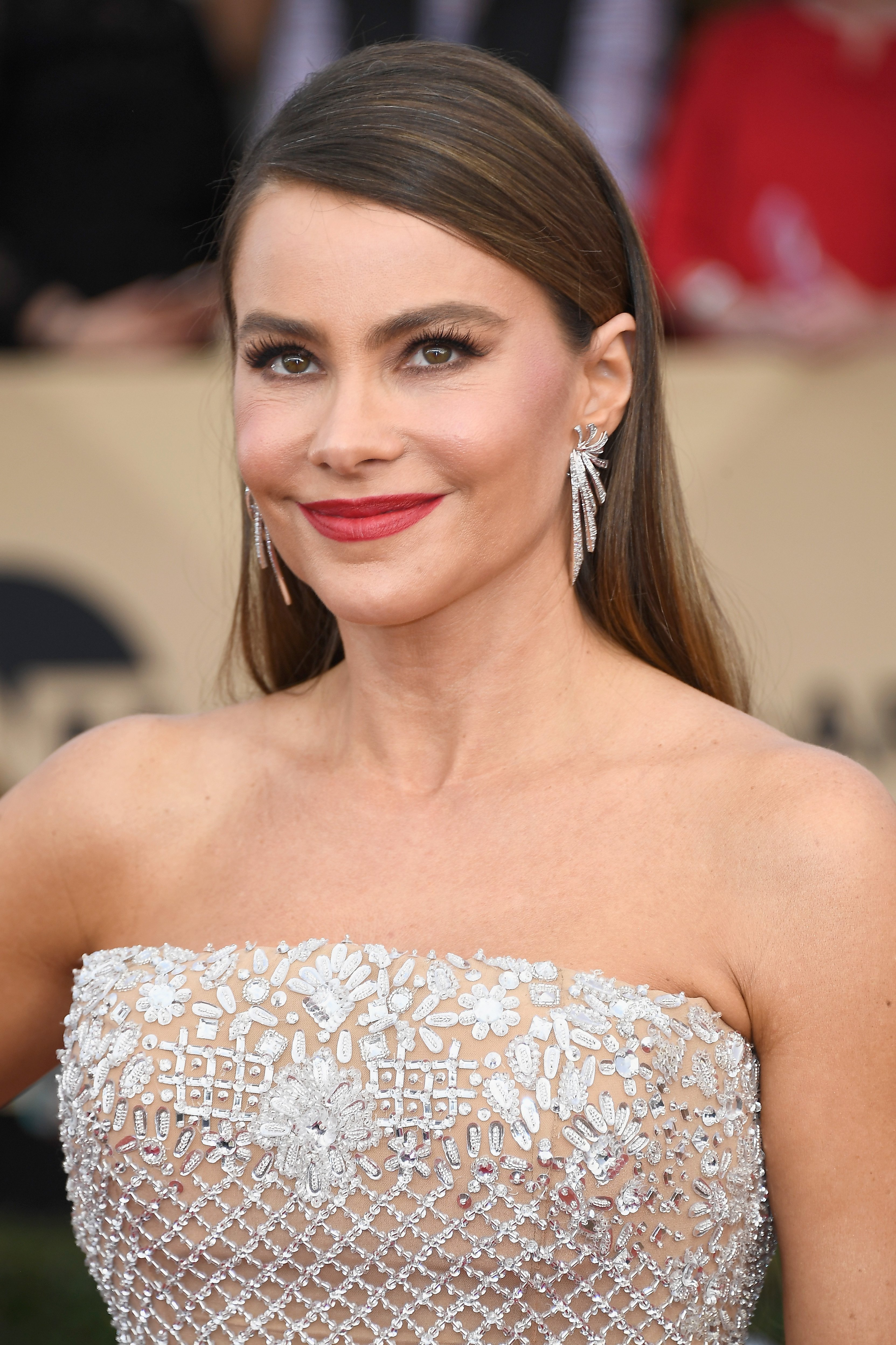 Sofia Vergara at The 23rd Annual Screen Actors Guild Awards on Jan. 29, 2017 in California | Photo: Getty Images
