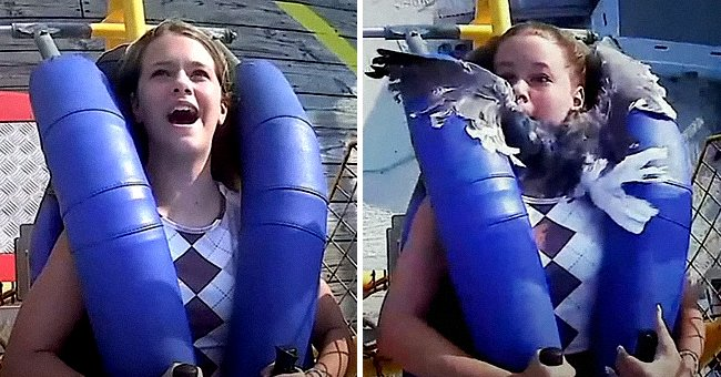 Kiley Holman riding on a rollercoaster when a seagull flies into her face.   Source:  youtube.com/abc7NY