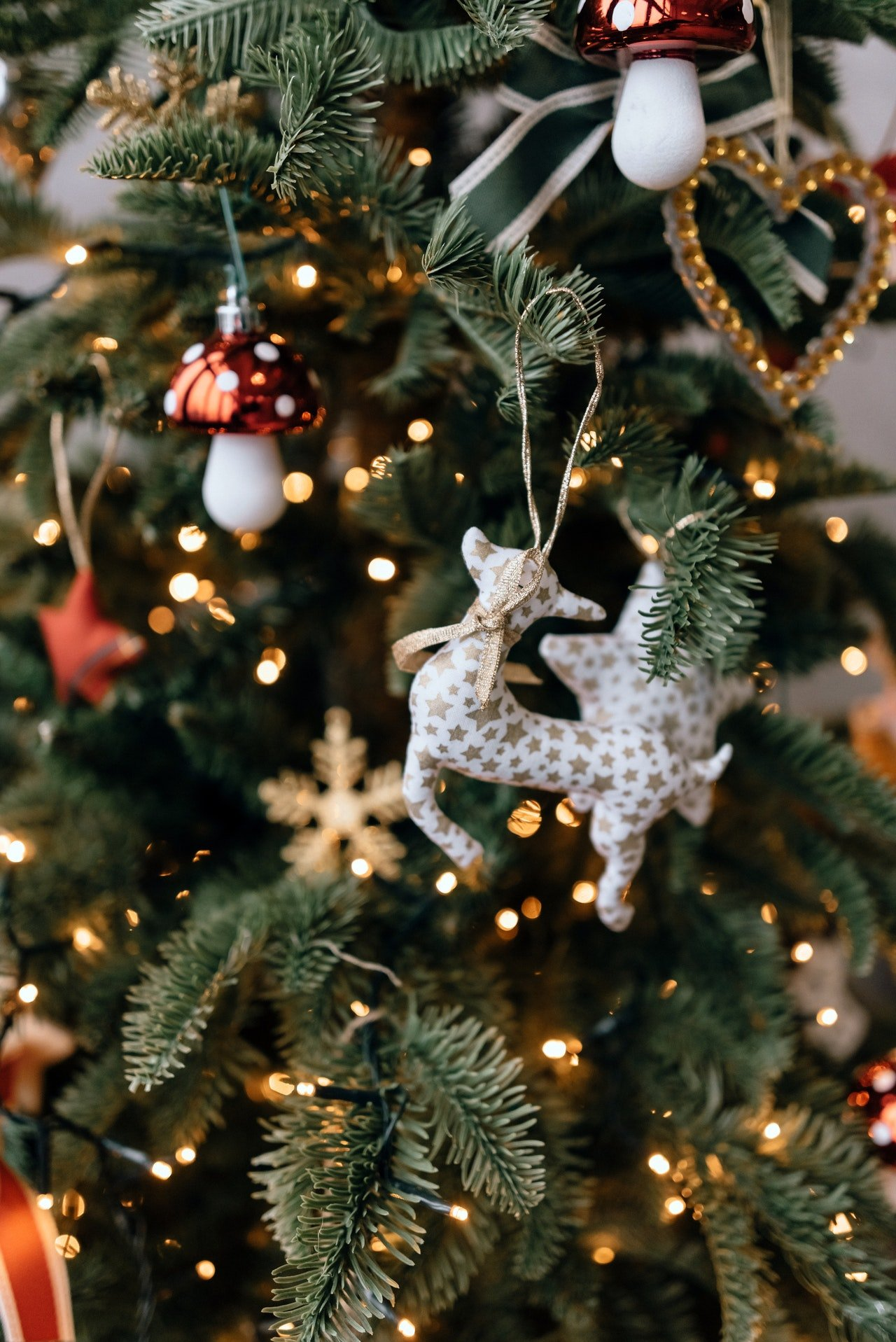 A christmas tree with decoration | Photo: Pexels