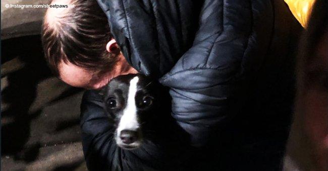 Hombre queda desamparado tras ser obligado a elegir entre su departamento y su perrito rescatado